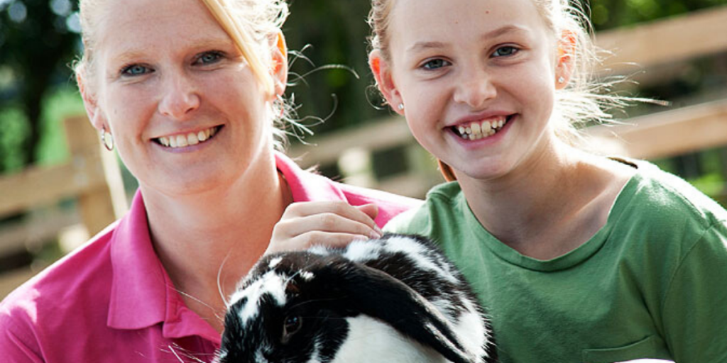 Visit Dairyland Farm World on your 2020 holiday in Cornwall